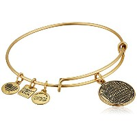 Alex and Ani Charity by DesignジョーAndruzzi Foundationバングルブレスレット One Size
