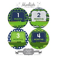 12 Monthly Baby Stickers, Alligators, Boy, Baby Belly Stickers, Monthly Onesie Stickers, First Year...