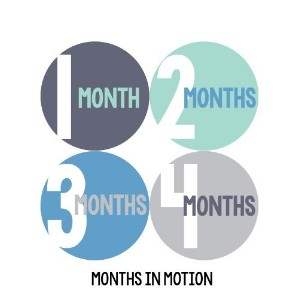 Months in Motion 298 Baby Month Stickers for Newborn Boy Blue Green by Months In Motion