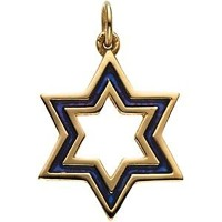 Enameled star of david Medal