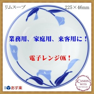 CANION WITS ブルーリリー 9524 BLUE LILY 【 リムスープ 】 あす楽対応 業務用 新生活 カフェ ランチ ディナー レストラン シンプル スタイリッシュ 上品 洋食器...