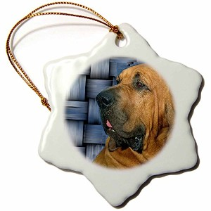 3dローズ犬Bloodhound–Bloodhound–Ornaments 3 inch Snowflake Porcelain Ornament orn_4415_1