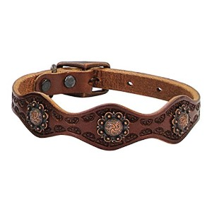 Weaver Sundance 1 Dog Collar - Size:1x17 Color:Brown by Weaver