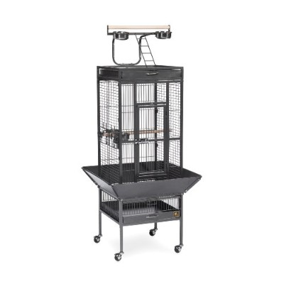 Prevue Pet Products 3151BLK 18 in. x 18 in. x 57 in. Wrought Iron Select Cage - Black