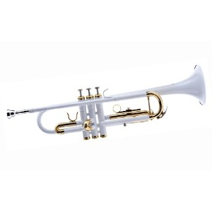 【WD-T314-WH Bb Trumpet with Case and Mouthpiece Bb トランペット Hawk社 White【並行輸入】】 b004nguxj0