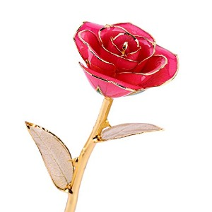 RealローズDipped in 24 Kゴールド、Forever Preserved Long Stem Rose withゴールデンリーフ、Perfect Gift Idea For Her...