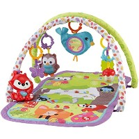 Fisher-Price 3-in-1 Musical Activity Gym Model: CDN47 (Newborn, Child, Infant) by Fisher-Price ...