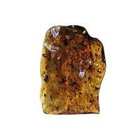 [AMBER by MAZUKNA]天然 琥珀 虫入り原石 126.2g/南米産 一点物 天然グリーン