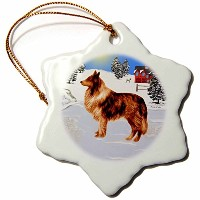 3dローズSmudgeart犬アートデザイン – コリーB – Ornaments 3 inch Snowflake Porcelain Ornament orn_15753_1