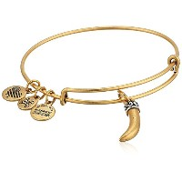 Alex and Ani Womens Hornバングル Expandable