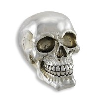 Chrome Silver Finish Human Head Skull Statue Figure