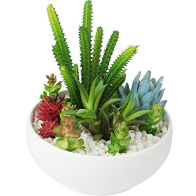 15cm Modern White Resin Round Succulent Planter Pot with Colourful Artificial Succulent Plants for...