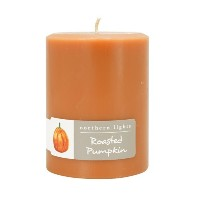 """Northern Lights Candles Roasted Pumpkin FragranceパレットPillar Candle、3x 4"""""""