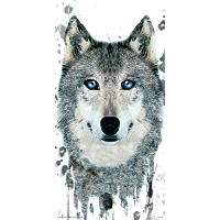 Wolf Face Close Up Modern Illustrated動物装飾アートポスター印刷 12 by 24 Rolled TTL056