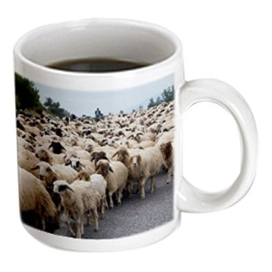 3drose Danita Delimont – ダレルグリン – Goats – Herding Goats along the highway in Central Turkey – マグカップ...