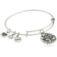 Alex and Ani Well of Wisdomバングルブレスレット One Size