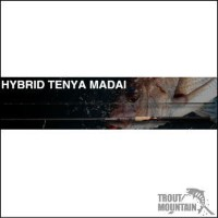"【送料無料】ノリーズHYBRID TENYA MADAI 【HTM80H】(POWER DEEP ""POWER DEEP"" - Spinning Model)"