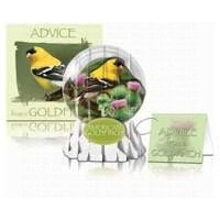 For The Birds IdentiFlyers GCSGPC011 Goldfinch Wingtip Card (set of 6)