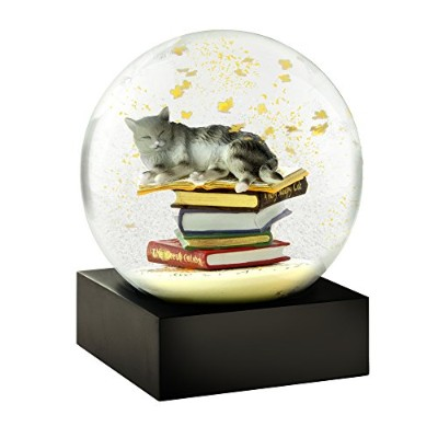 Cat on Books Cool Snow Globe by CoolSnowGlobes
