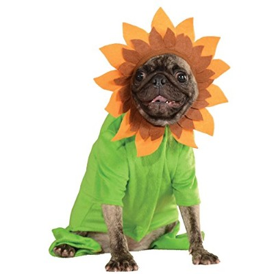 (XL) - Rubies Costume Halloween Classics Collection Pet Costume, X-Large, Sunflower