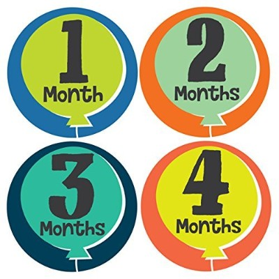Little Fete Monthly Stickers - Baby Girl - Months 1-12 by Lucy Darling