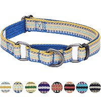 Blueberry Pet 3M Reflective Multi-colored Stripe Safety Training Martingale Dog Collar, Ginger and...