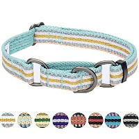 Blueberry Pet 3M Reflective Multi-colored Stripe Safety Training Martingale Dog Collar, Pastel Blue...