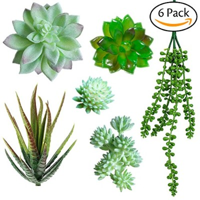 acerich 6個フェイク多肉植物人工フェイク多肉植物プラスチック多肉植物Fake Cactus in differentグリーンforホームGardern装飾 Mixed Size SKU...