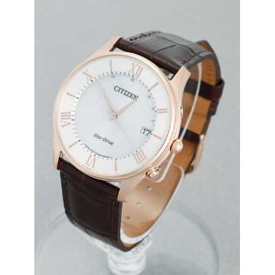 CITIZEN COLLECTION CITIZEN COLLECTION/(M)AS1062-08A シチズン ファッショングッズ【送料無料】