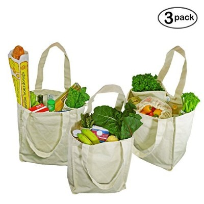 Simple Ecology Organic Cotton Deluxe Reusable Grocery Bag with Bottle Sleeves - Natural by Simple...