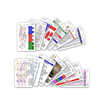 Complete EMS Vertical Badge Card Set - 12 Cards by Scrubs and Stuff LLC
