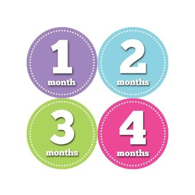 Months in Motion 062 Monthly Baby Stickers - Baby Girl - Month 1-12 - Milestone Age Sticker Photo...