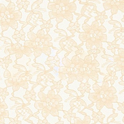 Ivory Raschel Lace Fabric - Sold By The Yard (FB) by Fabric Bravo