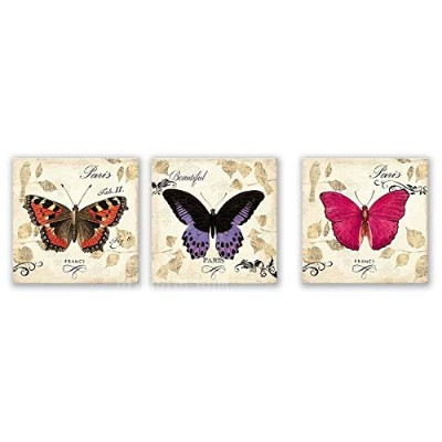 3pcs W372 Butterfly Pattern Combination Home Decoration Spray Painting