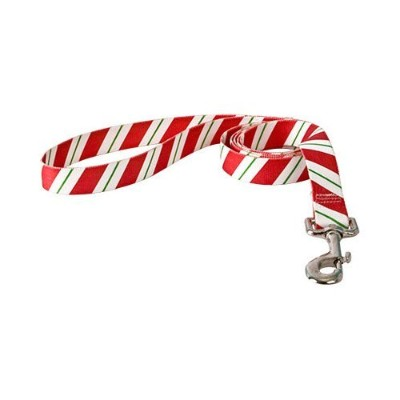 Yellow Dog Design PEP104LD 3/8 in. x 60 in. Peppermint Stick Lead