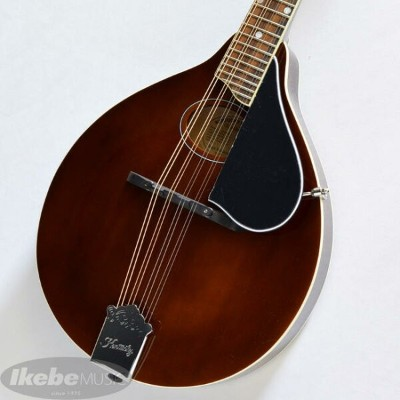 ≪楽しい≫Kentucky KM-350 Artist A-model Mandolin 《マンドリン