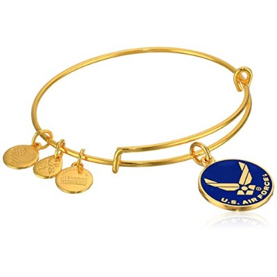"""Alex and Ani"""" Armed Forces"""" US Air Force Expandable Wire Bangleチャームブレスレット One Size"""