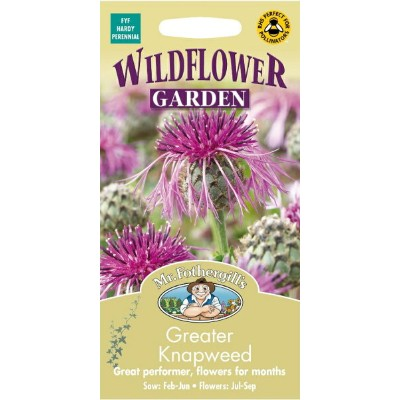 【輸入種子】Mr.Fothergill's SeedsWILDFLOWER GARDEN Greater Knapweed =Centaurea scabiosaワイルドフラワー・ガーデン...