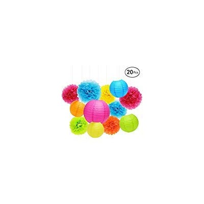 APLANET Set of 20 Assorted Rainbow Colour Paper Pom Poms and Paper Lanterns, 5 Colours, for Party,...