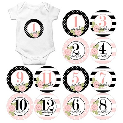 Gift Set of 12 Round Keepsake Photography Monthly Baby Stickers with Pink and Black Roses MOSG175...