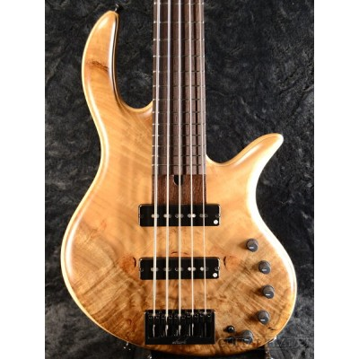 elrick Gold Series E-volution 5 -Figured Myrtle Top/Ash Back- 新品[エルリック][ゴールドシリーズ][エボリューション]...
