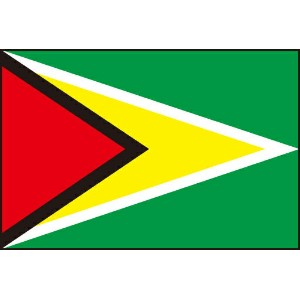 105cm 小サイズ・アクリル・国旗 ガイアナ共和国(Republic of Guyana )・National flag【応援グッズ】