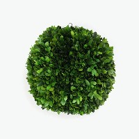 【SALE】【新品】WILLOW GROUP(ウィローグループ)PLANT BALL SMALL 挿し木 プラントボール