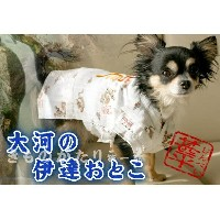 ANNY'S DOGS 龍刺繍の甚平 2S S 小型犬 犬服 浴衣 L
