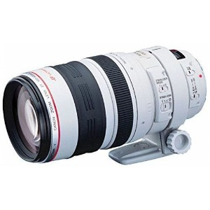 【中古】【1年保証】【美品】 Canon 望遠ズーム EF100-400mm F4.5-5.6L IS USM
