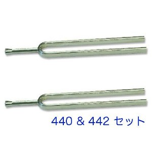Wittner ウィットナー 音叉 No.924 tuning fork (角形 ) (A=440 & 442 セット) ケース付き