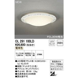 ODELICオーデリックLED小型シーリングライトOL291100LD