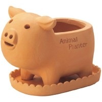 GREEN HOUSE Animal Terracotta Sサイズ ブタ 2544-A