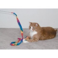 Cat Dancer 301 Cat Charmer Interactive Cat Toy 3pk by Cat Dancer Products