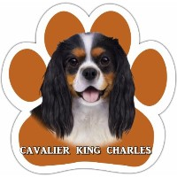 King Charles Cavalier, Tri Color Car Magnet With Unique Paw Shaped Design Measures 5.2 by 5.2...